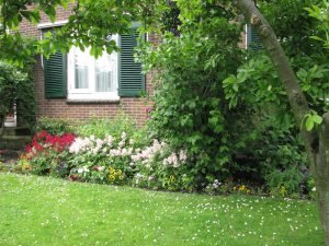 Casele acompaniate de flori – un decor de vis!
