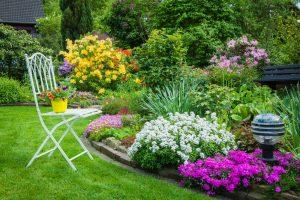 3 trucuri prin care poti avea gradina luxuriantă pe care ți-ai dorit-o dintotdeauna