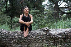 4 obstacole dificil de depășit dacă vrei o casă în pădure