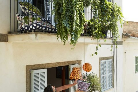 Minigrădini pe balcon – soluții răcoroase pentru zile toride