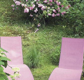 Un colț de rai în grădină