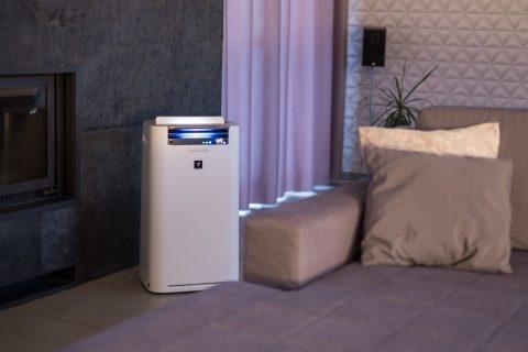 Cum reglăm corect umiditatea în casă?
