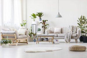 Un aer mai curat,o locuință mai sănătoasă